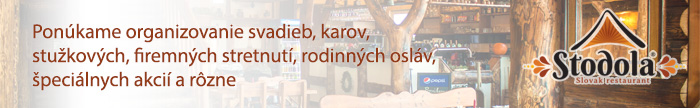 banner-novy